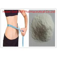 Wholesale CAS 541-15-1 L Carnitine Weight Loss Steroids , Fat Burning Anabolic Steroids Without Side Effects from china suppliers