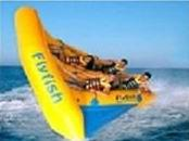 Wholesale Exciting Inflatable Flying Fish Boat for Entertainment from china suppliers