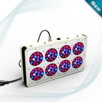 Wholesale culture indoor cidly led 300Watt led plant light, led flowering light cidly led grow light from china suppliers