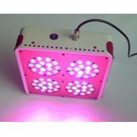 Wholesale Apollo-4 Hydroponic LED Grow Light for Planting Photosynthesis (CDL-Apollo4) from china suppliers