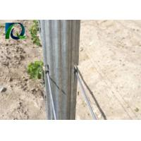 4M Galvanised Steel Vineyard Posts With W - Shaped Section Silver Color