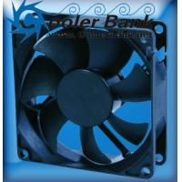 Wholesale CHENG HOME 40x40x56mm 12V DC Fan CHE4012IB-AP-2 from china suppliers
