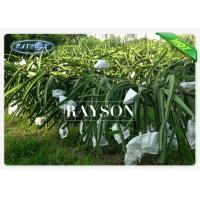 Wholesale UV Protection Agriculture Use Non Woven Tree Planting Bags Biodegradable / Recyclable from china suppliers