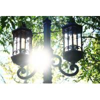Wholesale European style lighting pole/light poles outdoors/lamps pole professional exporter from china suppliers