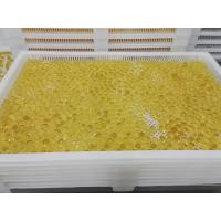 Wholesale Food Grade Plastic / Metal Tray And Trolly For Drying Capsule Candy from china suppliers