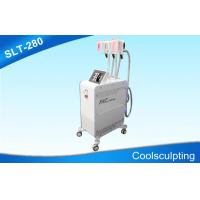 Wholesale Three Handpieces Cryolipolysis Slimming Machine / Coolsculpting Fat Freezing Equipment from china suppliers