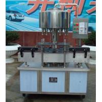 Wholesale Rotary Vegetable Oil PET Bottle Filling Machine 3000BPH Stable performance from china suppliers
