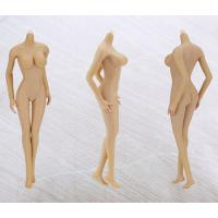 Quality 1:6 Scale figure   Wheat-Colored Skin Big Breast for sale
