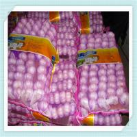 Wholesale Normal White Pure White Fresh Garlic market garlic price from china suppliers