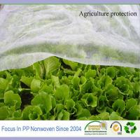 Wholesale TNT fabric for agriculture cover spunbonded fabric jumbo roll from china suppliers
