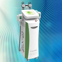 Wholesale -15℃ Cool Body Sculpting Cryolipolysis Machine (40 days to see result) from china suppliers