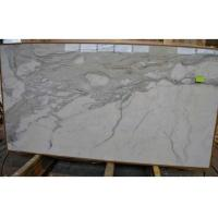 Quality Morden Design Italy Calacatta Marble Slab , Marble Wall Slab 20mm Thickness for sale