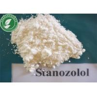 Wholesale Bulking Anabolic Steroid Powder Winstrol Stanozolol For Fat Loss CAS 10418-03-8 from china suppliers