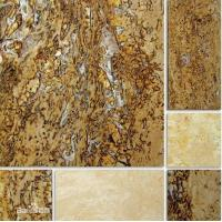 Wholesale Top Seller in USA Natural Chinese Yellow Travertine from china suppliers