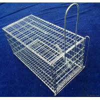 China Live Animal Mouse Trap on sale