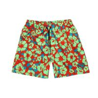 Wholesale Mens Printed Board Shorts 06 from china suppliers