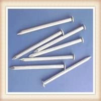 Wholesale concrete nail/common nail/nail from china suppliers