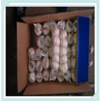 Wholesale wholesale garlic price market with good quality in China from china suppliers