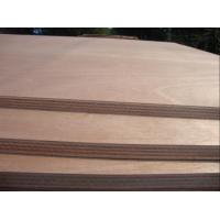 Wholesale Top quality  Bintangor Plywood from china suppliers