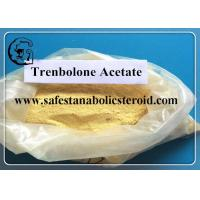 Wholesale Trenbolone Acetate , Raw Yellow Powder Einecs No. 233-432-5 UPS Standard from china suppliers