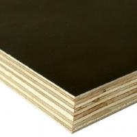 Quality Black film face and Back, poplar core, birch core, hardwood core,Size: 1220X2440X5MM-25MM. for sale
