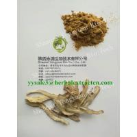 Wholesale Dong Quai Extract, Angelica Extract, Ligustilide 1%, CAS No.: 4431-01-0, TCM Extract, High quality, Shaanxi Yongyuan Bio from china suppliers