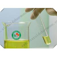 Wholesale 303-42-4 Androgenic Legal Healthy Steroids Methenolone Enanthate / Primobolan Depot Injection from china suppliers