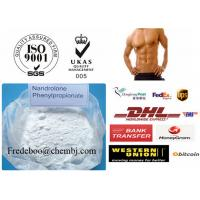 Wholesale 62-90-8 Nandrolone Steroid / Nandrolone Phenylpropionate for Bodybuilding from china suppliers