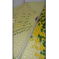 Wholesale Softgel Capsule Inspection Machine Paintball Counting And Packing Machine from china suppliers
