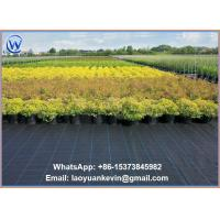 "Wholesale 40"" x 300 ft Ground Cover Nets Weed Control Landscape Fabric from china suppliers"