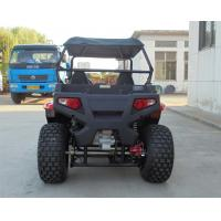 "Quality Front And Rear 10"" Big Tire Gas Utility Vehicles With Chain Drive for sale"