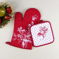 Wholesale Christmas Theme Highly Recommend Kitchen Cooking Pot Holder and Oven Mitten Glove from china suppliers