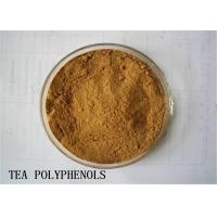 Wholesale Skin Care Cosmetic Raw Materials Tea Polyphenols Catechin High EGCG Antioxidant from china suppliers