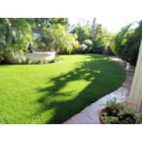 Wholesale Commercial Natural Outdoor Artificial Grass , landscaping artificial turf from china suppliers