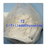 Wholesale Fat Burning Steroids T3 Na Homebrew Steroids Liothyronine Sodium Fat Loss CAS 55-06-1 from china suppliers