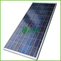 Wholesale High Efficiency Commercial 70w Sharp Polycrystalline Solar Panels CEC / MCS from china suppliers