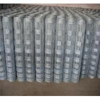 Wholesale Farm fence field fence cattle fence from china suppliers