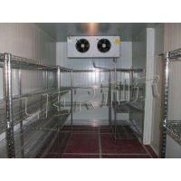Wholesale CE Approved Cold Storage Room , Freezer Shipping Containers Bitzer Compressor from china suppliers
