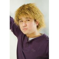 Wholesale Personalized Synthetic Brown Men Sports Fan Wigs for Party from china suppliers