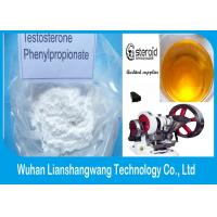 Wholesale CAS 1255-49-8 Boldenone Steroid Testosterone Phenylpropionate Healthy Drug from china suppliers