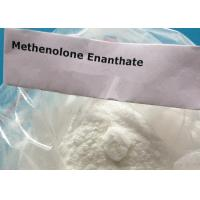 Wholesale Primobolan Muscle Building Methenolone Enanthate Strongest Steroids Powder Body Shape from china suppliers