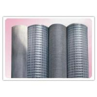 Durable, Corrosion Resistance 120 Mesh Stainless Steel Screen Cloth For Clear Filtration