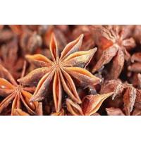Wholesale Fructus anisi stellati Extract, Star Anise Extract, 10:1, Traditional Chinese herb Extract, 100% natural high quality from china suppliers