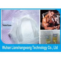 Wholesale Weight Loss Anabolic Steroids Testosterone Propionate Injection CAS 57-85-2 from china suppliers