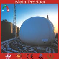 Wholesale Large size biogas plant for farm from china suppliers