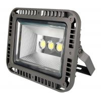 Wholesale Luxury style CE ROHS IP67  outdoor led flood light from china suppliers