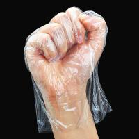 Quality Custom Polyethylene Disposable Gloves , CPE Food Grade Disposable Gloves for sale
