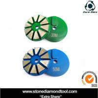 Quality Concrete Metal Abrasive Tool Floor Diamond Grinding Disc for Scanmaskin for sale