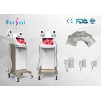 Wholesale 1800W vertical 2 handles cryolipolysis fat freezing Slimming beauty machine for cellulite from china suppliers