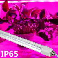 Wholesale Professional Blue / Red LED Tube Grow Lights For Plant Growth , 18W Power from china suppliers